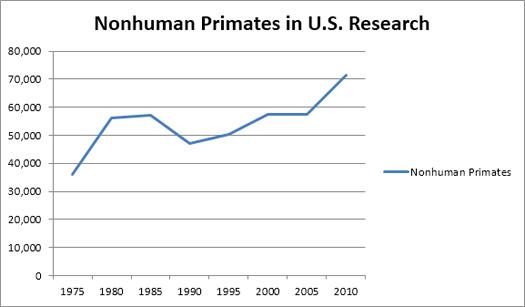 nonhuman-primates